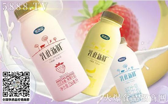 新鲜牛奶价格