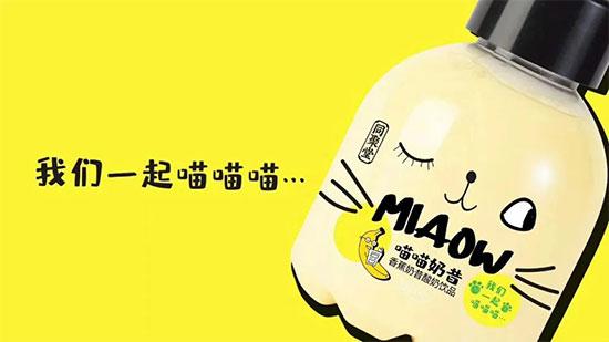 米奇同聚堂喵喵奶昔酸奶