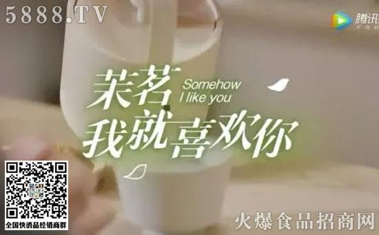 康师傅茉莉茶1