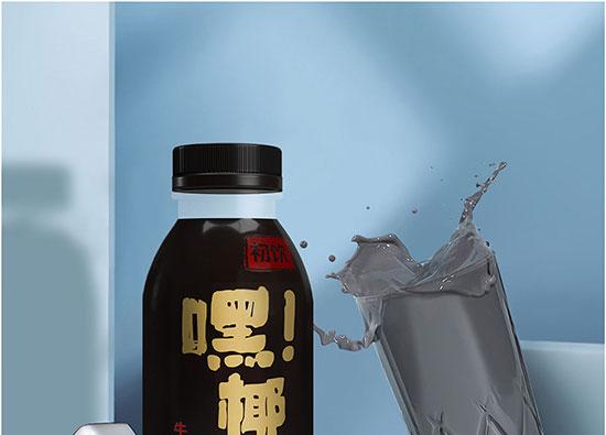 山东初饮生物科技有限公司-黑椰汁_06