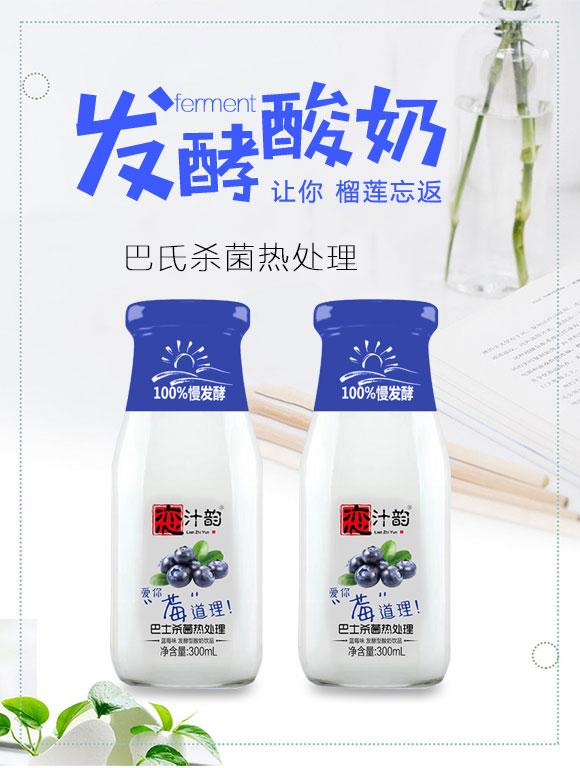 河北恋汁韵饮品有限公司酸奶蓝莓_01