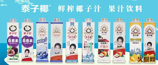 广东泰子椰食品有限公司