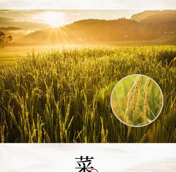 河南豫元食品有限公司-煲仔饭09_04