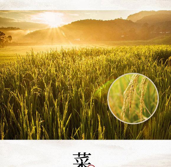 河南豫元食品有限公司-煲仔饭07_04