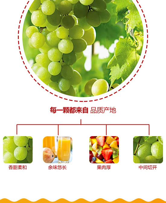 河南浩明饮品有限公司-果汁07_04