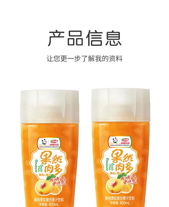 河南浩明饮品有限公司-果汁06_02