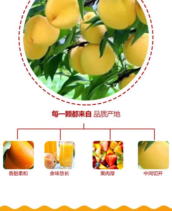 河南浩明饮品有限公司-果汁06_04