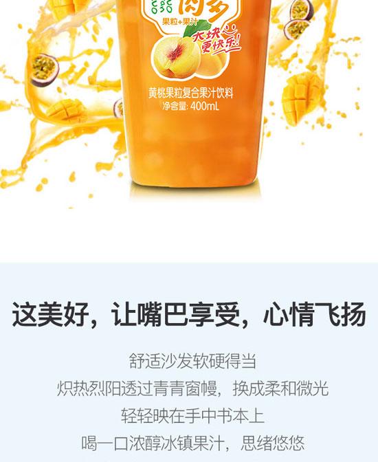 河南浩明饮品有限公司-果汁06_08
