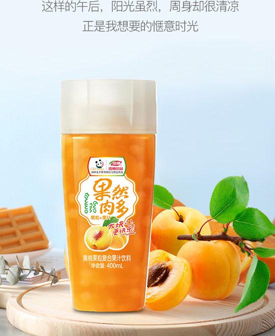河南浩明饮品有限公司-果汁06_09