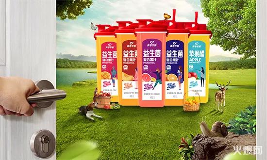 青春益族益生菌复合果汁