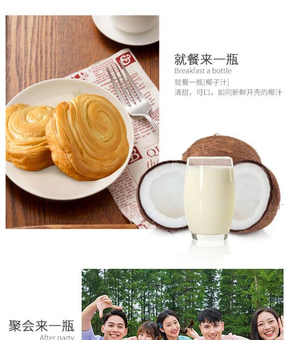 中山市回力食品饮料有限公司-椰汁02_09