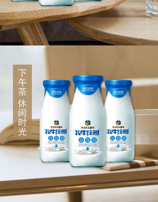河南邑源乳业有限公司-酸奶-1_09