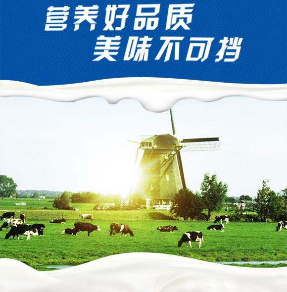 圣牧有机纯牛奶250mlx12