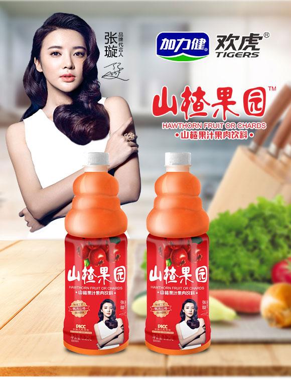 焦作市加力健食品有限公司-山楂果汁02_01