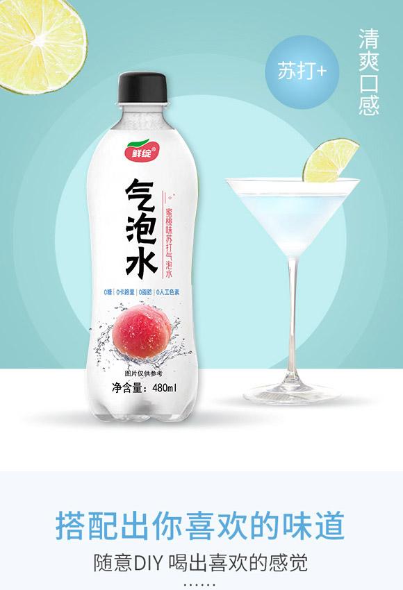 深圳福临门食品有限公司-气泡水03_04