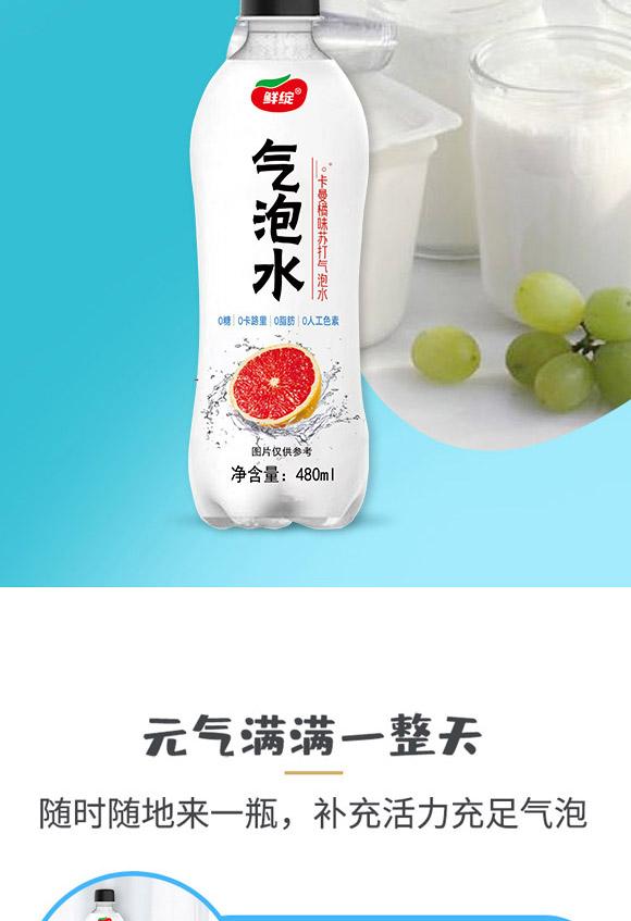 深圳福临门食品有限公司-气泡水01_06