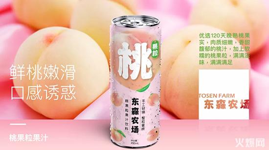 东森农场桃果粒果汁桃汁
