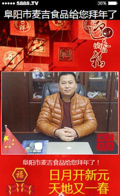 阜阳市麦吉食品祝您新年快乐!